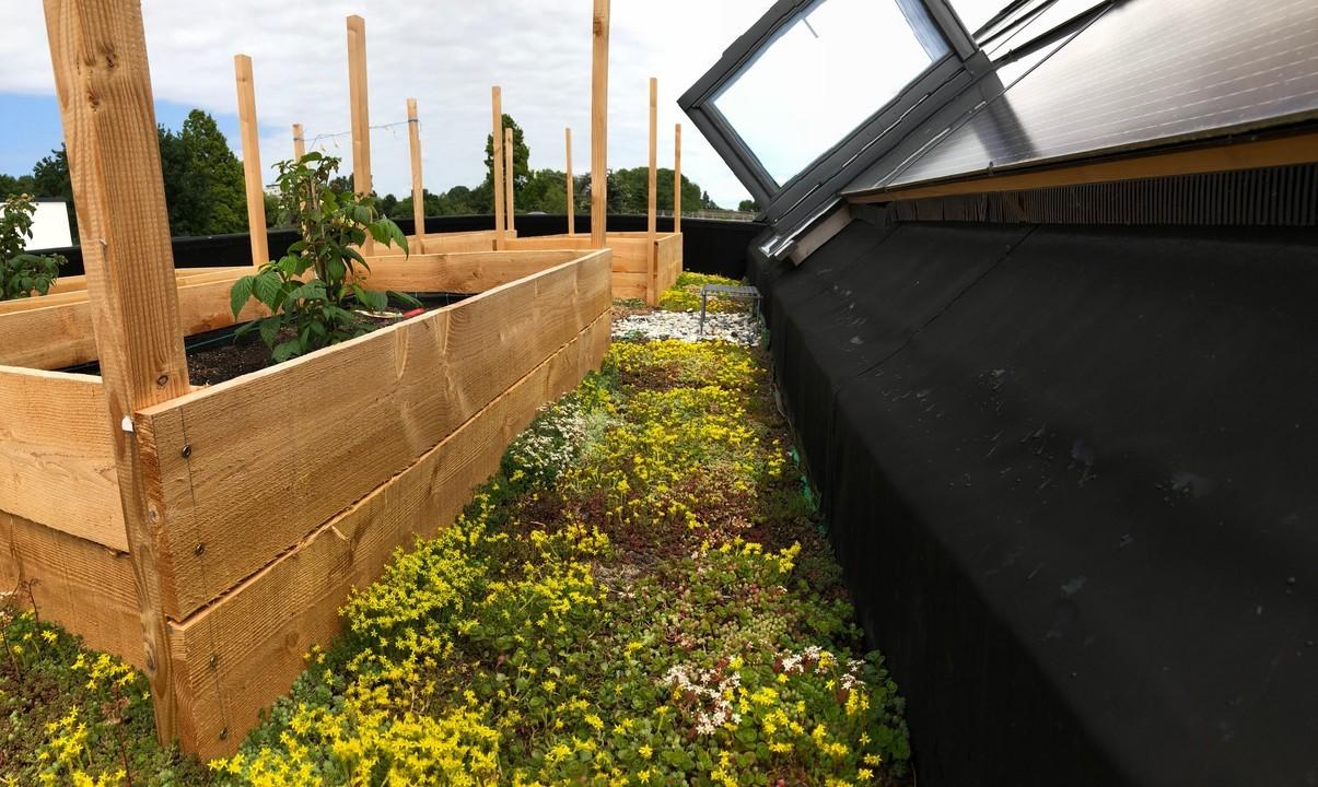 Active House blog Bas Hasselaar deel 49: Biodivers, klimaatadaptief en circulair